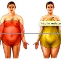 Hoe weet ik of ik insuline resistent ben?