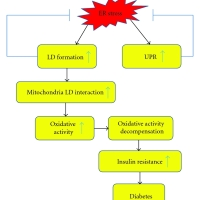 Chronische stress en Diabetes type 2