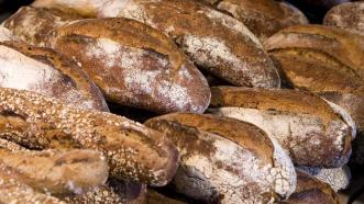 volkoren brood