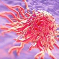 """""""Kanker is geen ziekte maar een overlevingsmechanisme""""."""